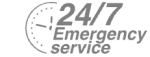 24/7 Emergency Service Pest Control in Stratford, West Ham, E15. Call Now! 020 8166 9746